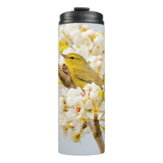 Orange-Crowned Warbler Amid the Cherry Blossoms Thermal Tumbler