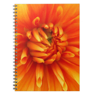 Orange Dahlia Flower Notebook