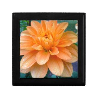 Orange Dahlia Gift Box