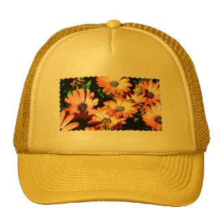 Orange Daisies Mesh Hat