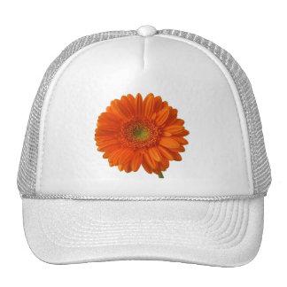 Orange Daisy Baseball Hat