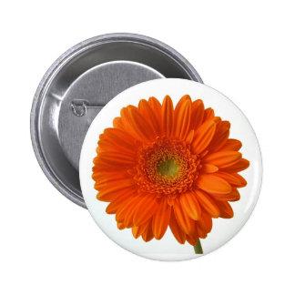 Orange Daisy Button