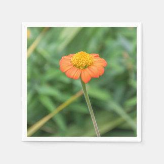 Orange daisy disposable serviette