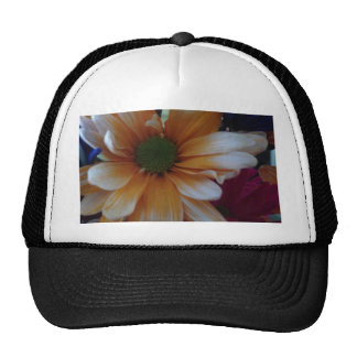 Orange Daisy Trucker Hats