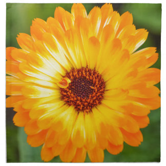 Orange Daisy Napkin