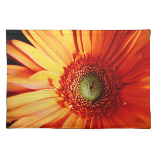 Orange Daisy Placemat