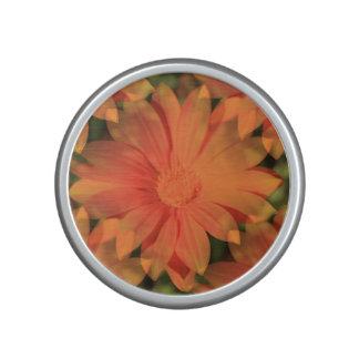 Orange Daisy - Speaker
