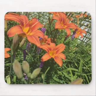 Orange Day Lilies at the Farm mouse pad