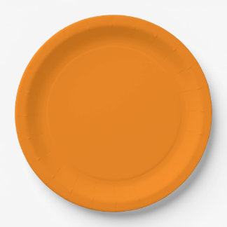 Orange Dinner Paper Plate