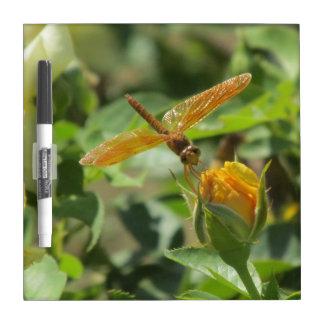 Orange Dragonfly on Yellow Rosebud Dry Erase Board