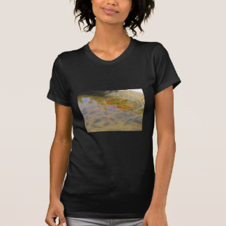 Orange Fish In The Clean Water Pond Shirts
