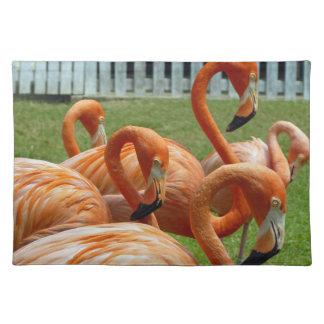 Orange flamingos placemat