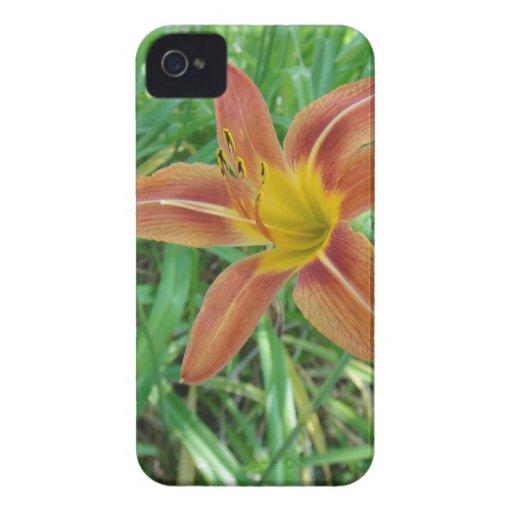 Orange Flower Blackberry Bold Case Mate Barely