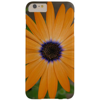 Orange flower, blue center barely there iPhone 6 plus case