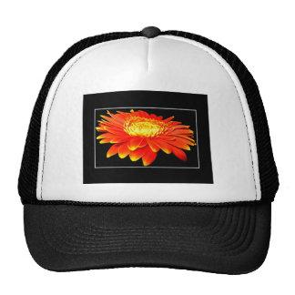 Orange Flower (Gerbera Daisy?) Hat