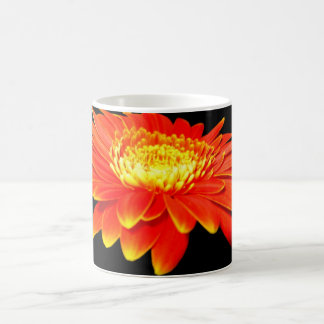 Orange Flower (Gerbera Daisy?) Mugs