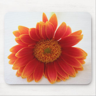 orange flower mouse pad