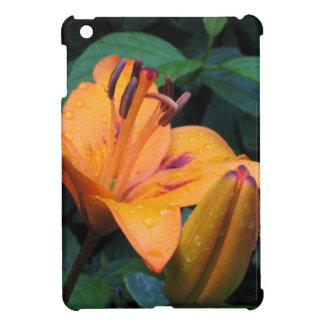 Orange flower with raindrops case for the iPad mini