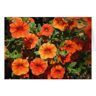 Orange Flowers Note Card