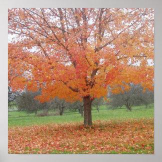 Orange foliage print