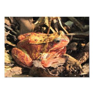 Orange Frog Invitation
