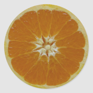 Orange Fruit Slice Round Sticker