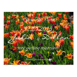 Orange Garden Save The Date Postcard