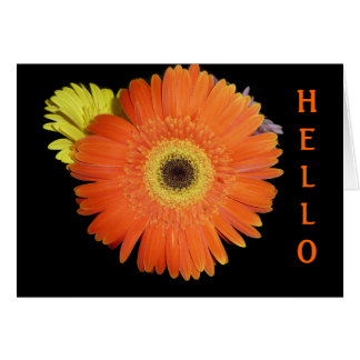 Orange Gerber Daisy Card