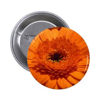 Orange Gerbera Buttons