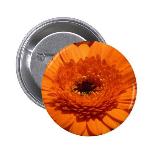 Orange Gerbera Pins
