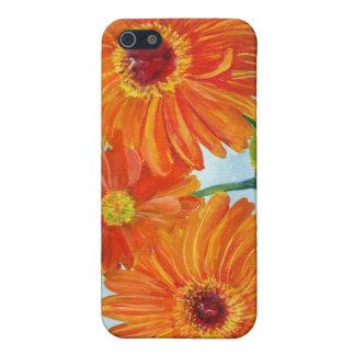 Orange Gerbera Daisies Speck Case iPhone 5 Case