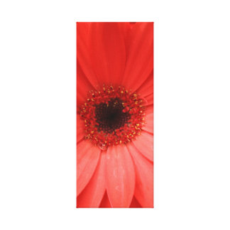 orange gerbera daisy 2 of 3 stretched canvas print