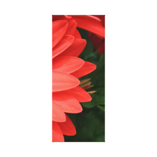 orange gerbera daisy 3 of 3 gallery wrap canvas