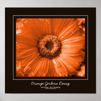 Orange Gerbera Daisy Chocolate Brown Border Poster
