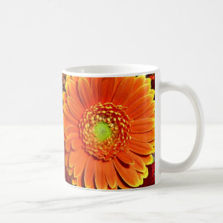Orange Gerbera Daisy Coffee Mug