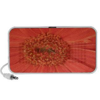 Orange Gerbera Daisy Doodle Notebook Speaker