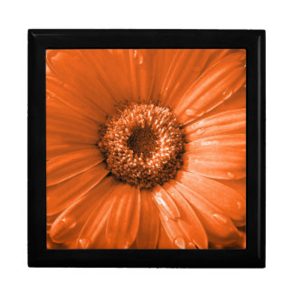 Orange Gerbera Daisy Large Square Gift Box