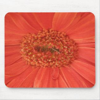 Orange Gerbera Daisy Mousepad