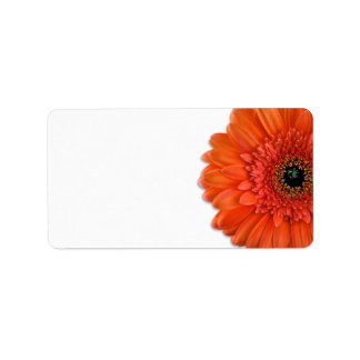 Orange Gerbera Daisy Wedding Blank Address Labels