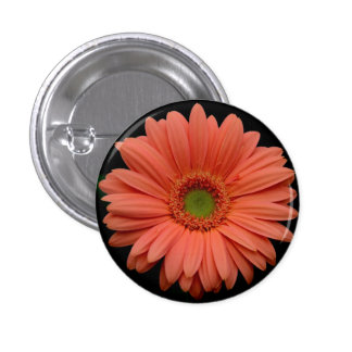 Orange Gerbera Flower Button