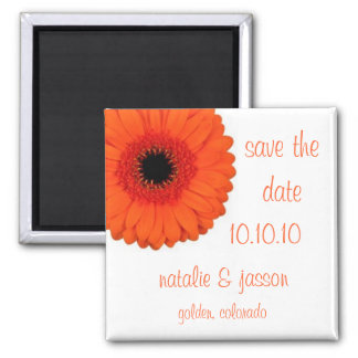 Orange Gerbera  Save the Date Square Magnet