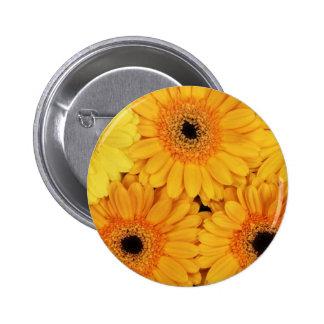 Orange Gerberas Pinback Buttons