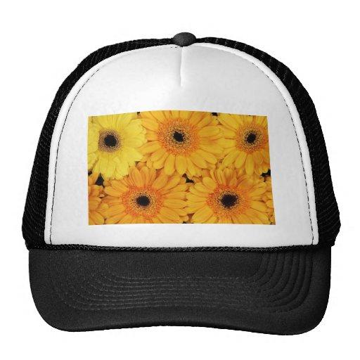 Orange Gerberas Mesh Hats