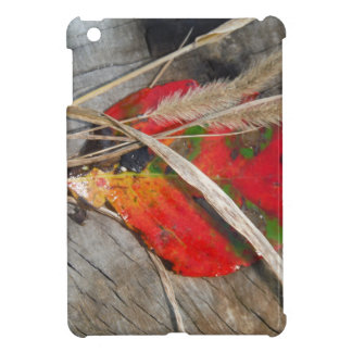 orange green yellow and fall leaf and dried grass cover for the iPad mini