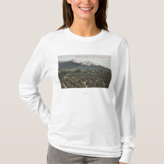 Orange Groves with Old Baldy Mt in Distance T-Shirt