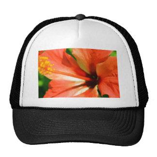 Orange Gumamela Hat