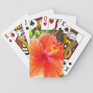 Orange Hibiscus Playing Cards