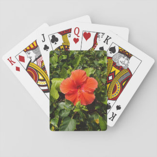 Orange Hibiscus Poker Deck