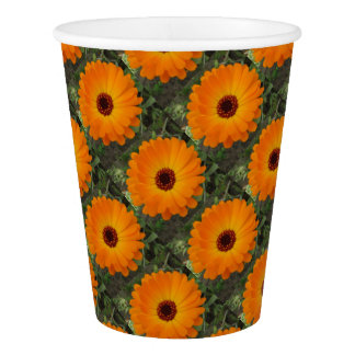 Orange Husbandman's Dial Marigold Flower Paper Cup