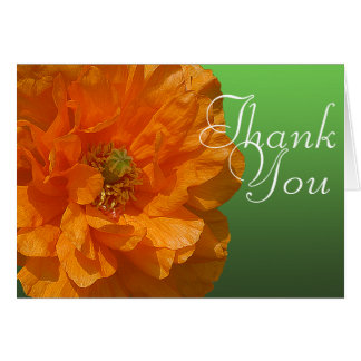 Orange Iceland Poppy Flower Photo Floral Thank You Card